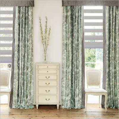 Zebra Shades with curtain